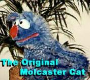 The 1st Generation Molcaster Cat