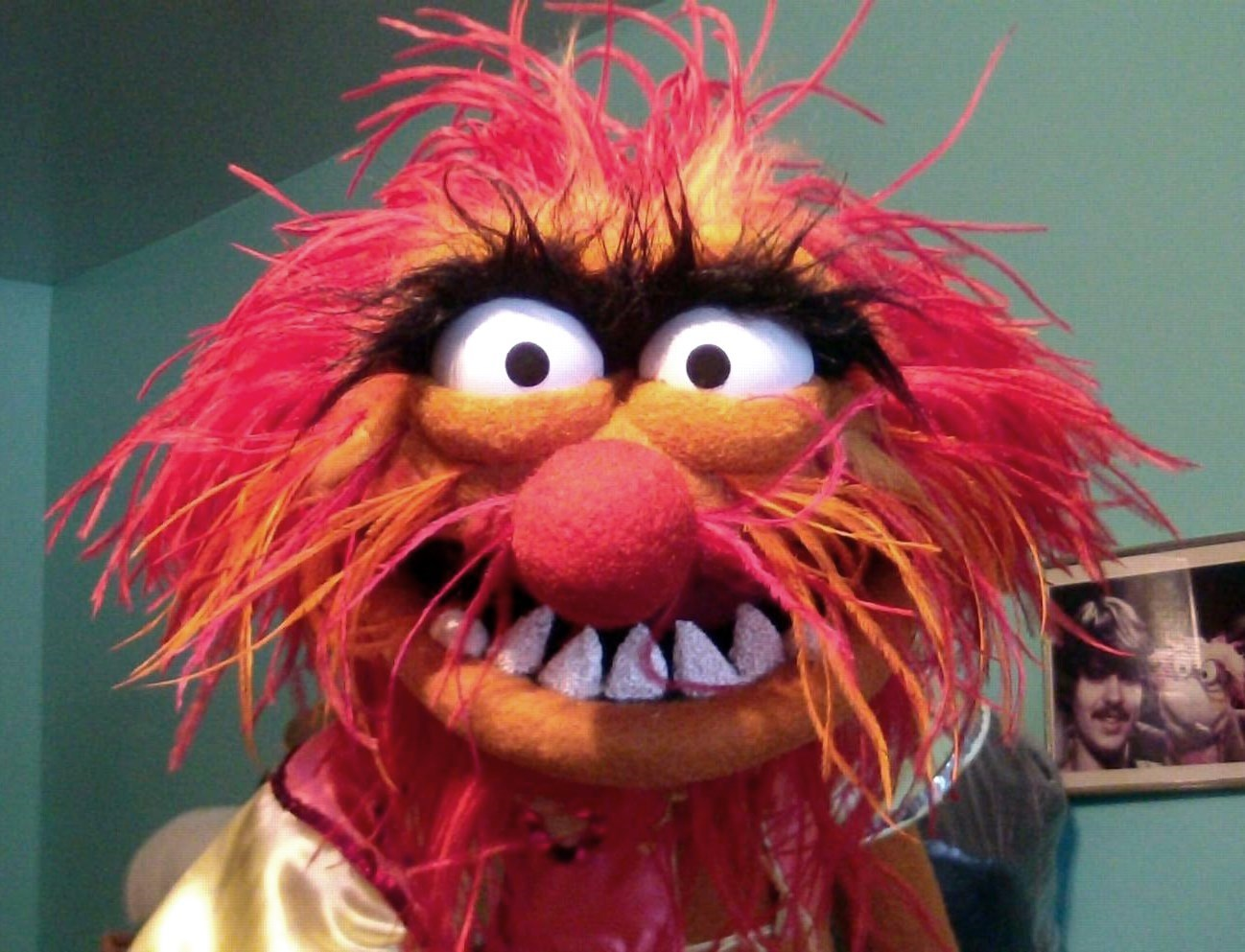 Angus puppets master replicas - Animal muppet images ...