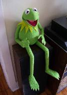 Kermit the Frog poser puppet sitting on cabinet
